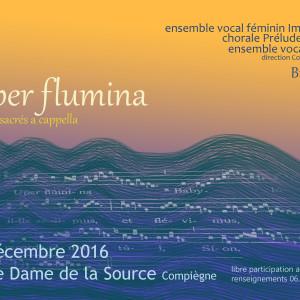 Concert Super Flumina
